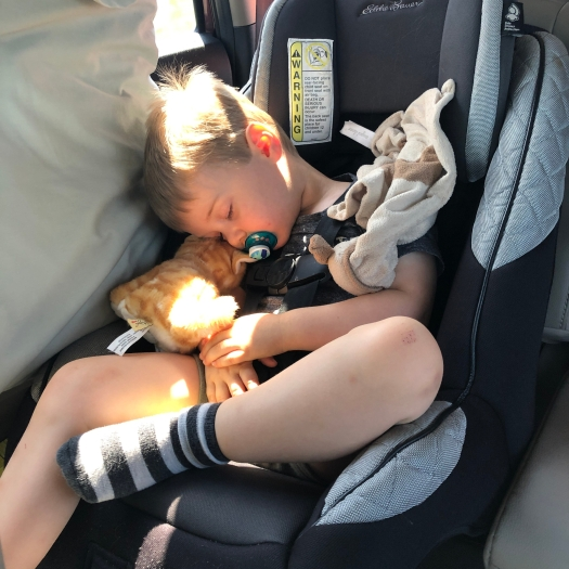 car nap on a long drive