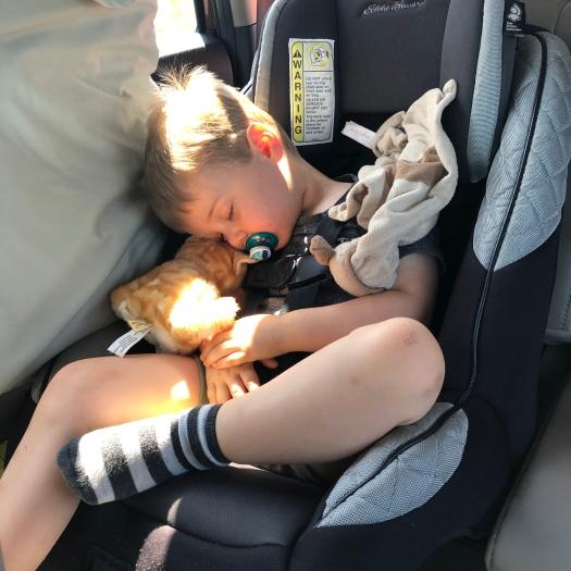 car nap on a long drive